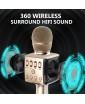 Madsound Y15S GOLD (золотой) - аккумуляторный блютуз микрофон с док станцией нового поколения
